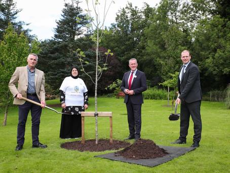 Stormont tree planting marks 25th anniversary of Srebrenica genocide