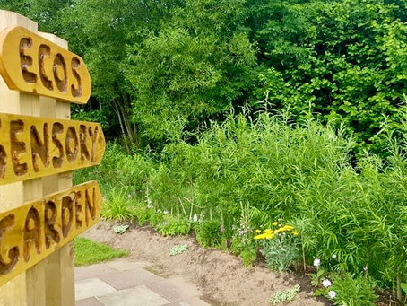 Sensory Garden set to open at Ecos Nature Park Ballymena