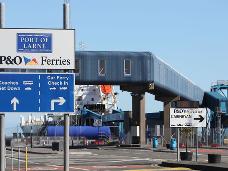 Minister instructs officials - no checks for pets travelling between NI and GB