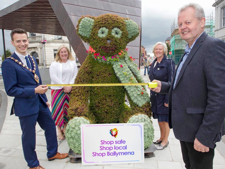The bears are back in town taking up prime 'paw'sitions in Ballymena