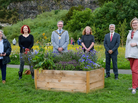 Whitehead Nature Reserve gets a makeover to 'dye' for