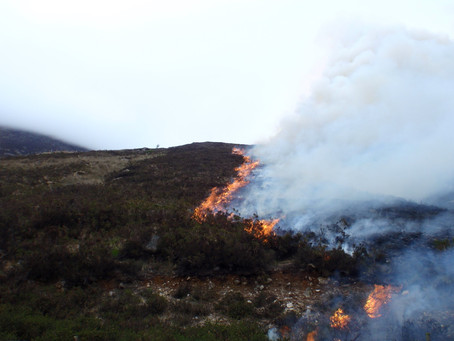 NI Water warns of wildfire risk for walkers as temperatures soar