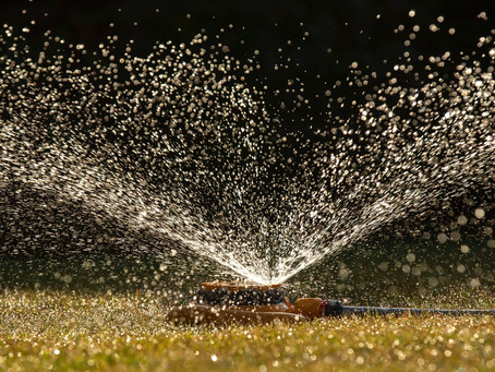 NI Water ask public to cut water usage urgently amid amber warning for heat