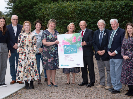 Mid and East Antrim triumphant in Translink Ulster in Bloom