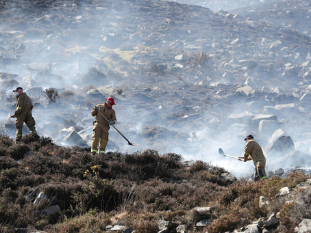 Public urged to act responsibly and remain vigilant to wildfires
