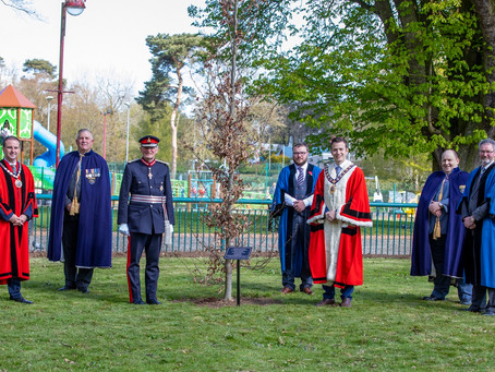 Centenary celebrations take root in Mid and East Antrim