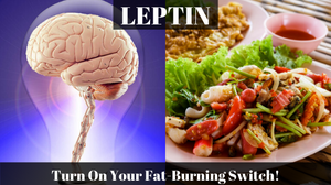 Lose Weight Tips, Weight Loss tips, Lose weight Fast