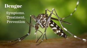 Dengue treatment, Dengue symptoms, Dengue treatment