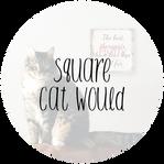 squarecat.png
