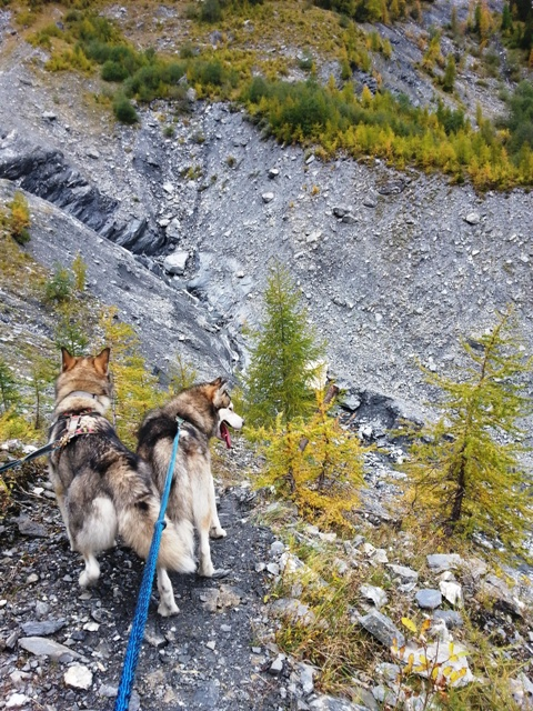 Bergtour Pratval- Glaspass
