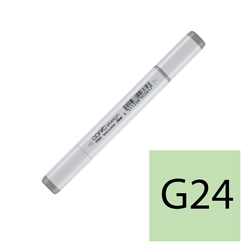 Sketch G24 Willow