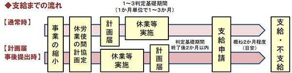 助成金(支給までの流れ).jpg