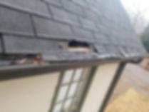 roof chewed.jpg