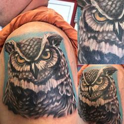 Owl portrait. One session.jpg