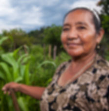 Mayan Farmer