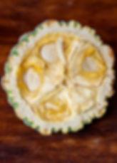 Cacao Junajpu, criollo tree