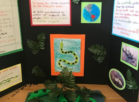 Grade 4 Animal Project