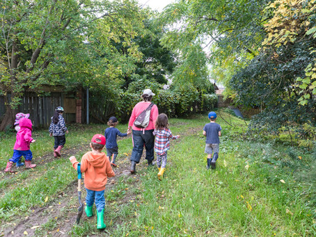 What Are The Benefits of a Nature Kindergarten Program?