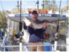 Sellfish Charter Boat