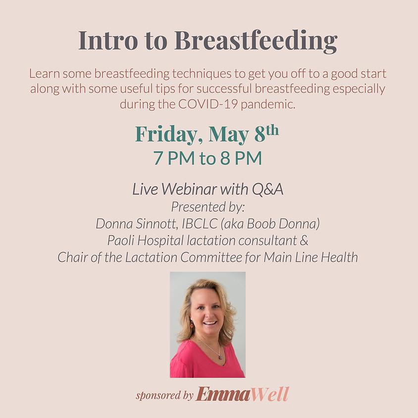 Intro to Breastfeeding Webinar
