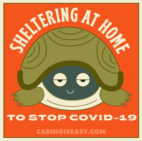 Sheltering At Home Orange Turtle