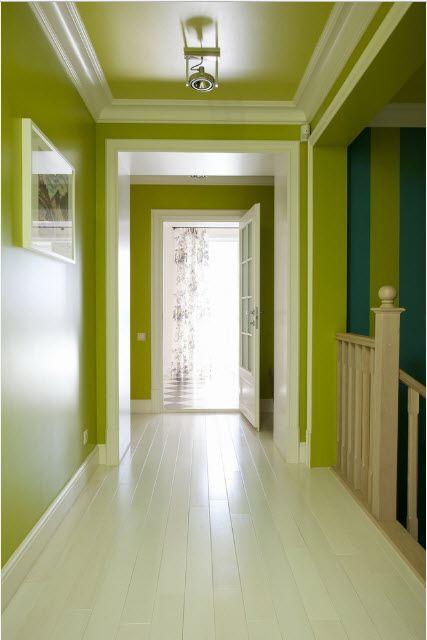 покрасили стены коридора резиновой краской