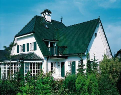 крыша дома покрашенная резиновой краской в зелёный цвет