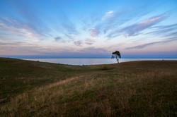 One and the horizon