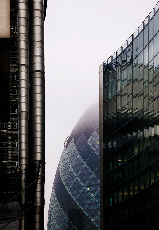 Lloyd and Gherkin