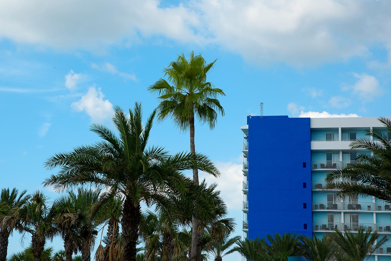 Florida colors