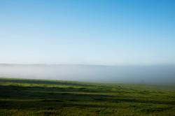 Masked landscape