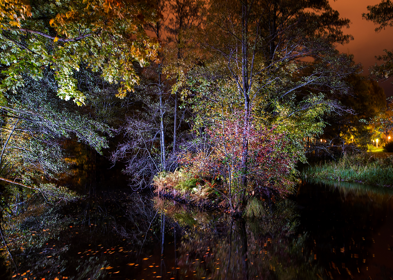 Lightpainted pond II