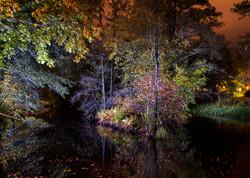 Lightpainted pond II