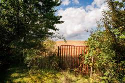 Gate to heavenly field