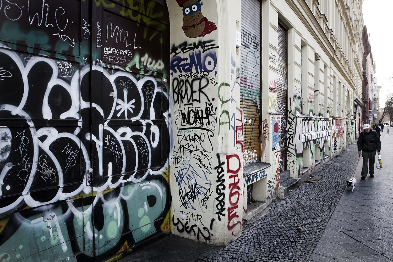 Berlin dogwalk