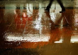 Bj [ Ö ] rkman | Vernissage #1-1 Bilder på canvas