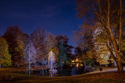 Star spangled pond