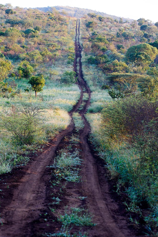 Travelling tracks