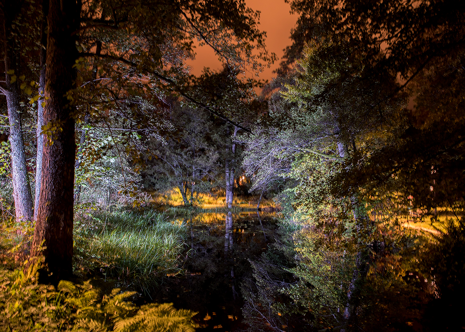 Lightpainted pond I