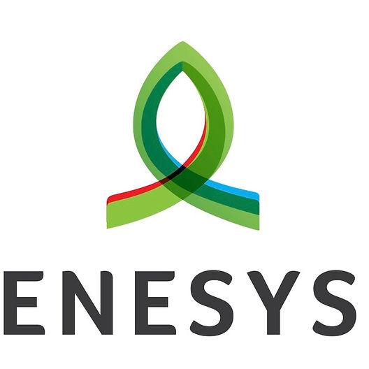 Enesys_logo%20copy_edited.jpg