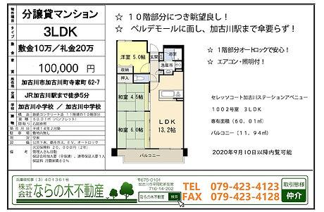 セレッソコート10万円資料.jpg