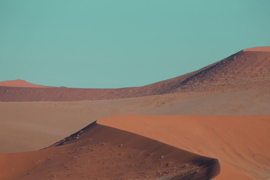 Kind of desert