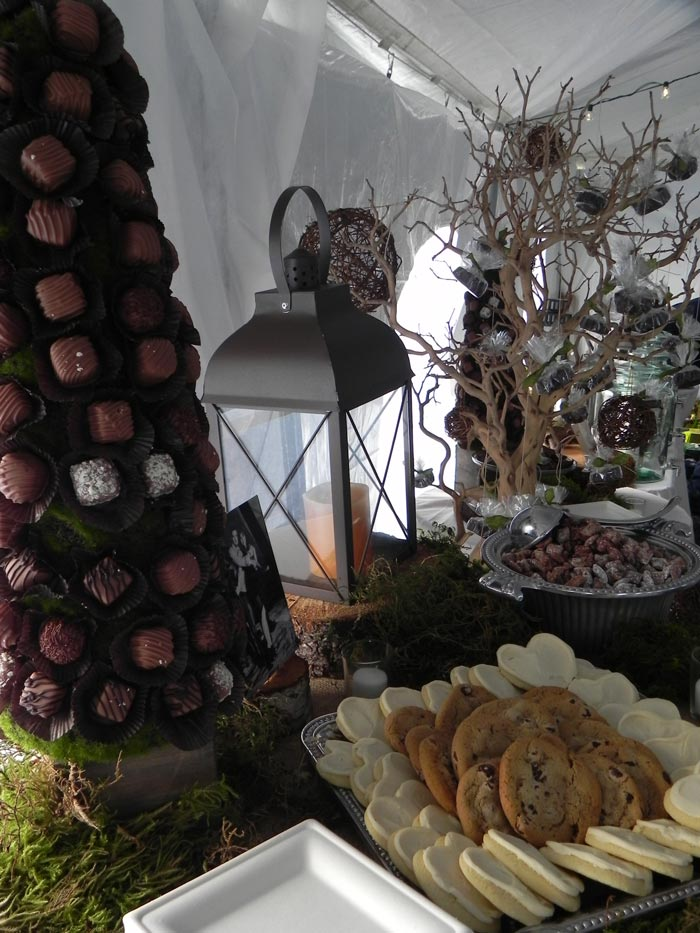 Chocolate-Tree.jpg