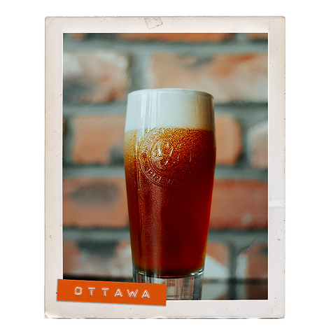 polaroid new beer.png
