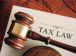 Professional Tax  return in France for Small business: obligation and filing deadline