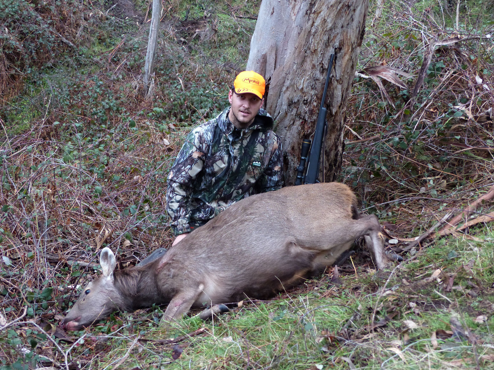 Patrick's first sambar deer