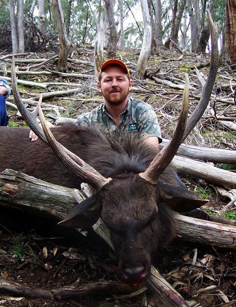 Paul's 30x30x32 sambar stag