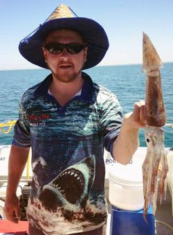 big arrow squid