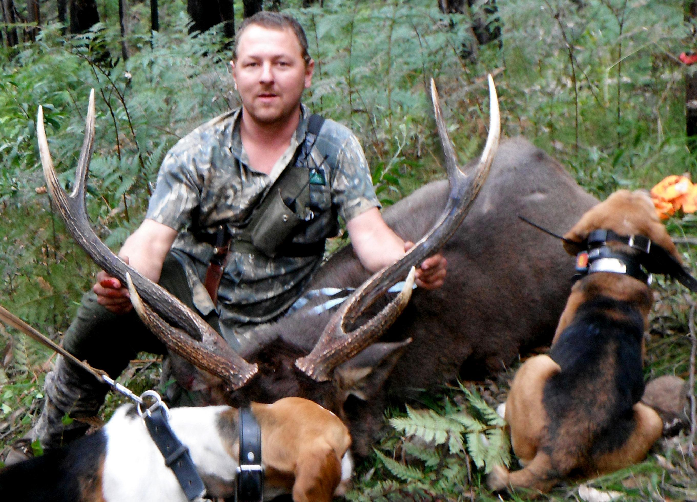 Paul's 30x30x35 sambar stag
