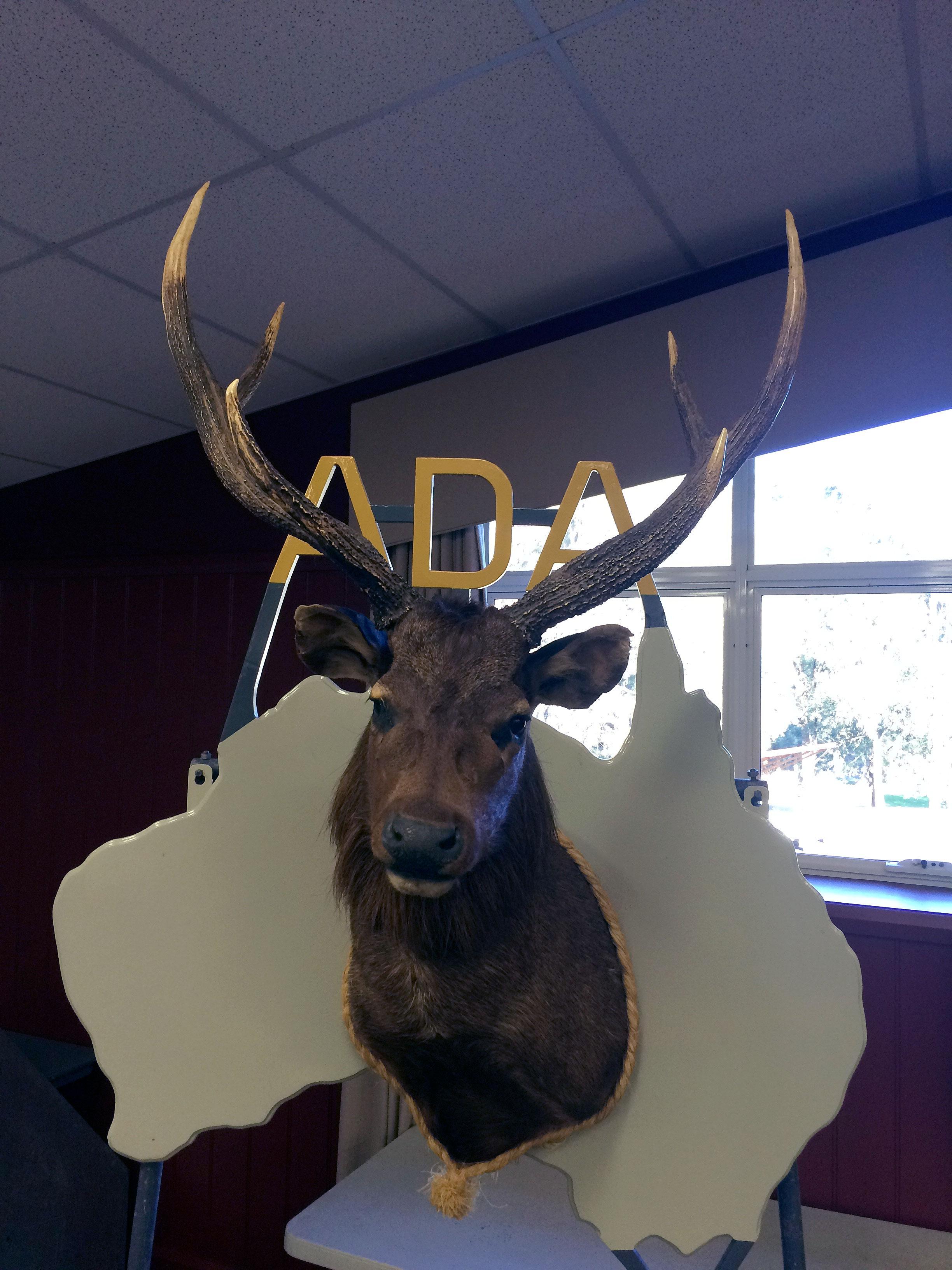 ADA forest edge 2016